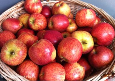A.Kleemann-Jacks-Apfelkorb