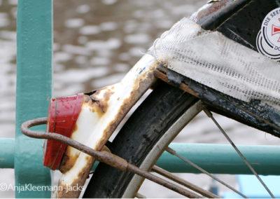 A.Kleemann-Jacks-bike
